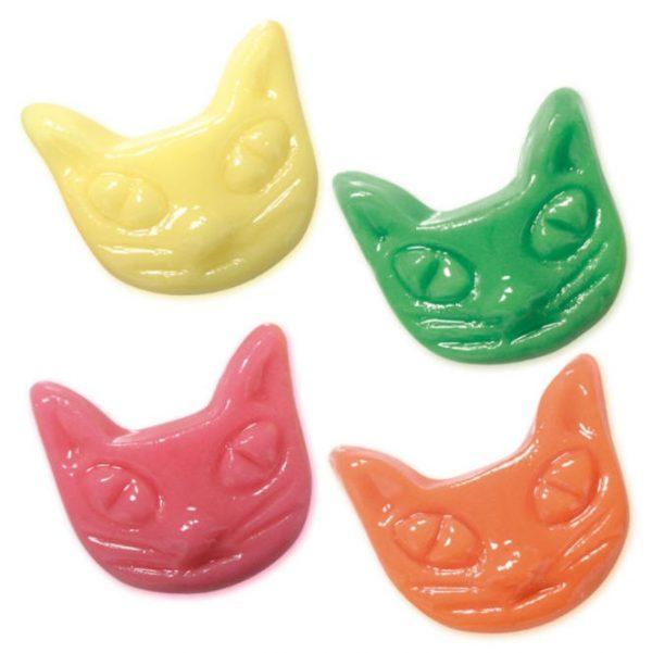 Caras de Gato2